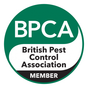 BPCA-member-logo-rgb-on-dark